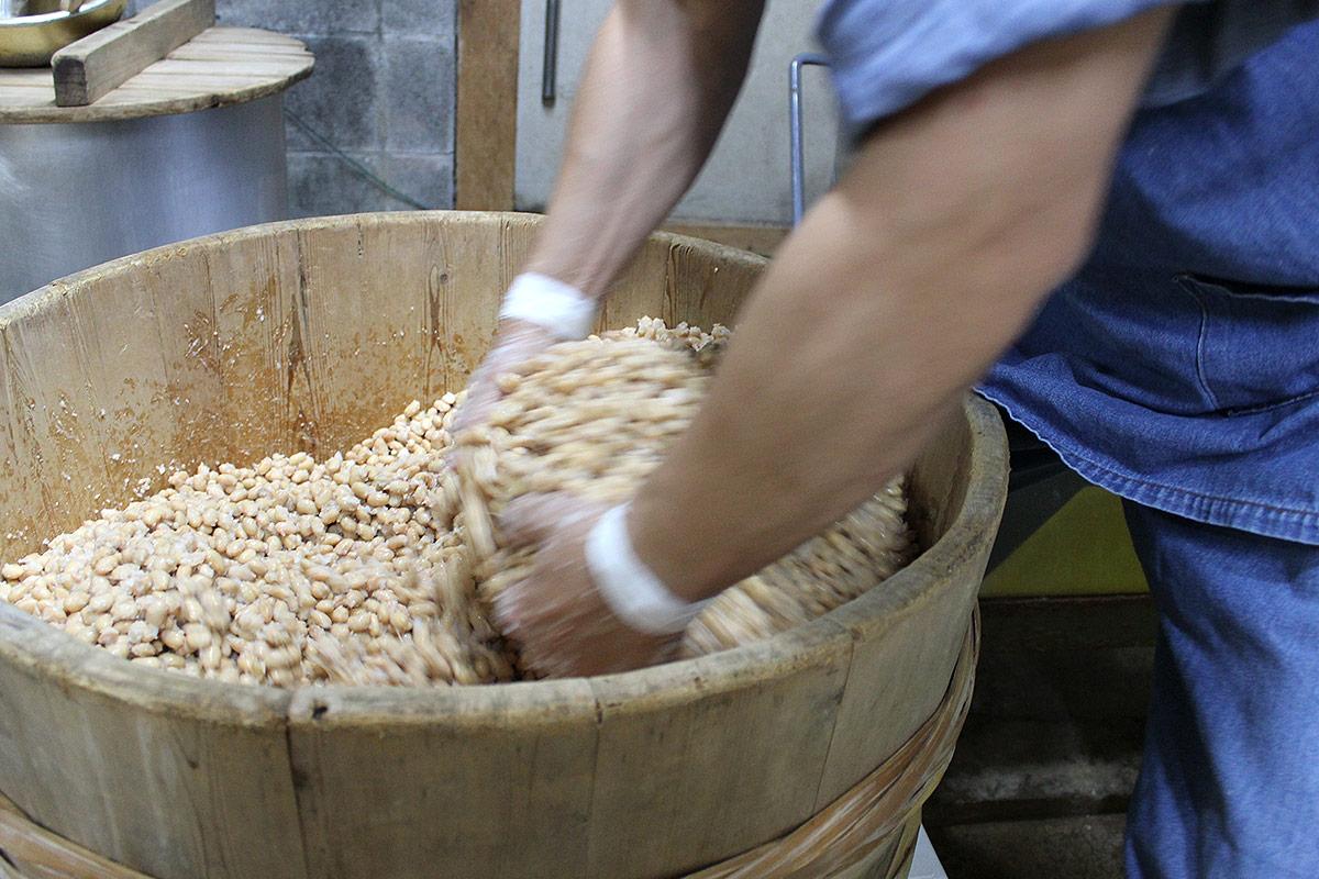 大豆に塩を混ぜる