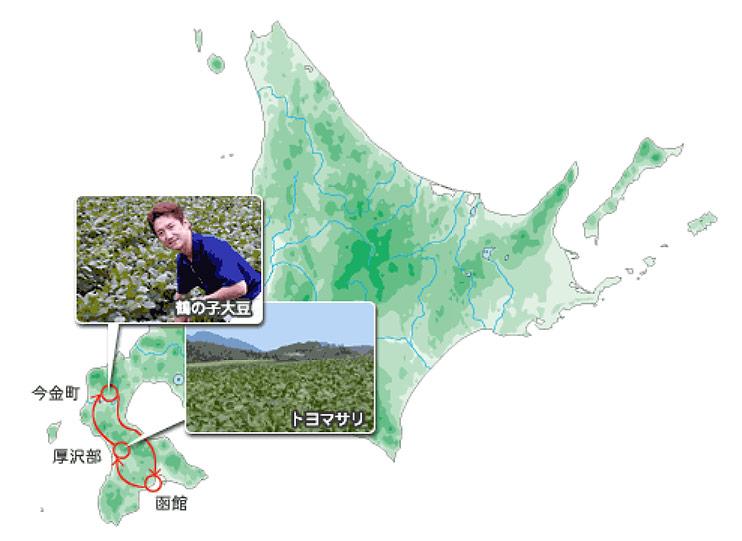 大豆畑の視察