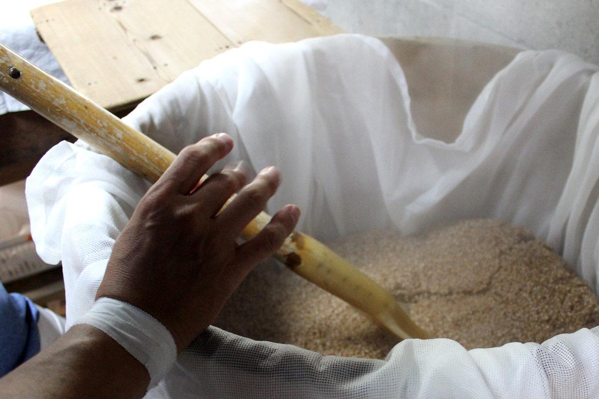 手作りの麹づくり
